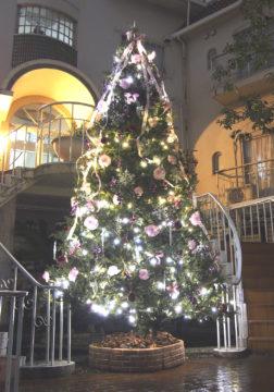 2016クリスマスツリー登場の画像