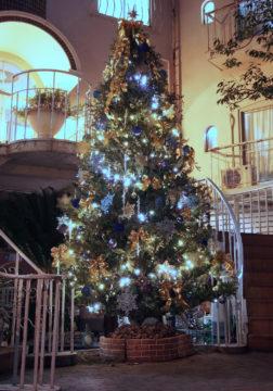 2017クリスマスツリー登場の画像