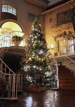 2018クリスマスツリー登場の画像