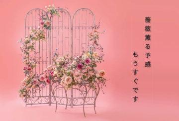 第51回 名古屋深雪会 深雪アートフラワー合同展の画像
