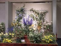 九州深雪会 「ナチュラルガーデン 喜びを花にたくして」