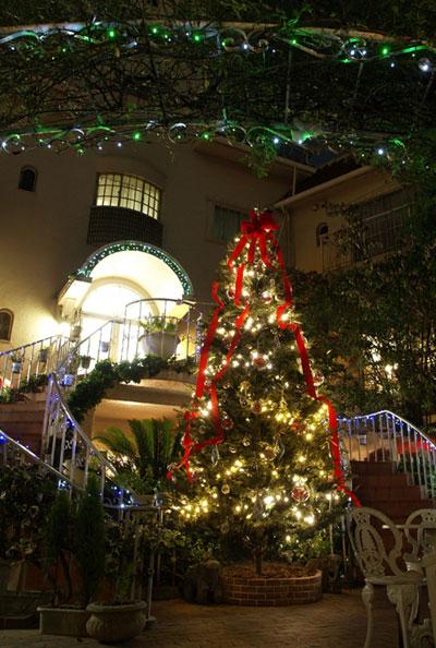 2009クリスマスツリー
