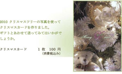 2010christmas2