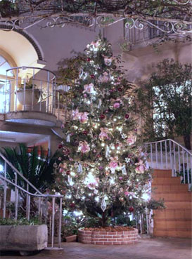 2011 クリスマスツリー登場