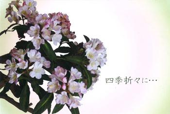 長野りんどうの会 20周年記念 深雪アートフラワー展の画像